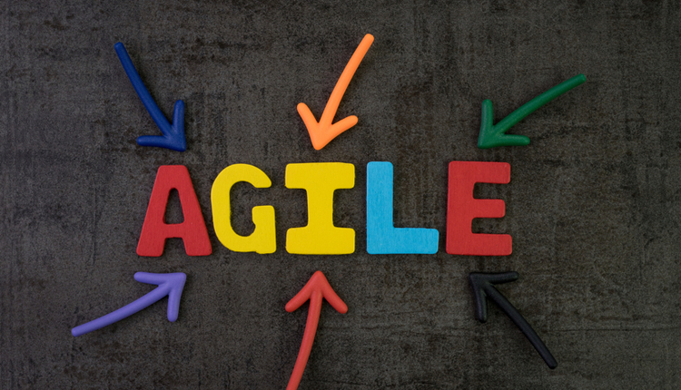 Agile Approach for Document Management