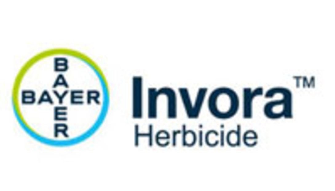 Bayer-Inova-logo