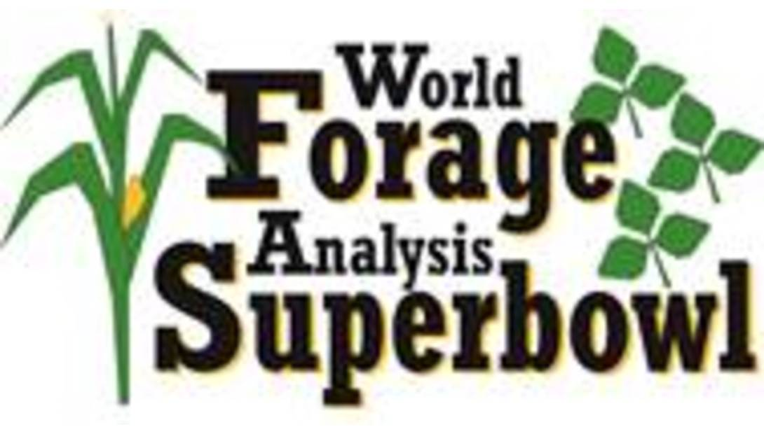 FF5-World-Forage-Superbowl