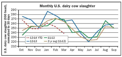Monthly U.S. dairy cow slaughter data