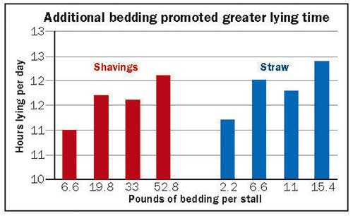 additional bedding promoted greater lying time