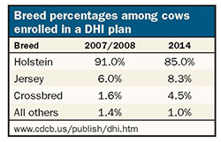 Breed percentages among cows enrolled in a DHI plan