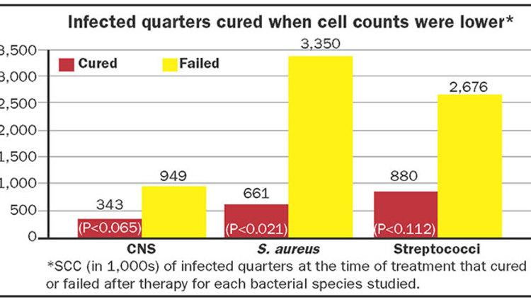 180110_28-scc-cure