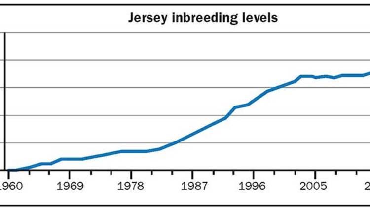 180425_276-Jersey-inbreeding