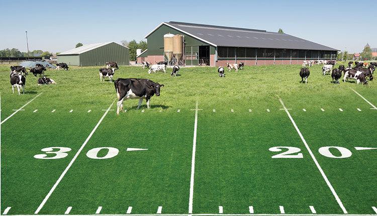 190510_287-footbal-field