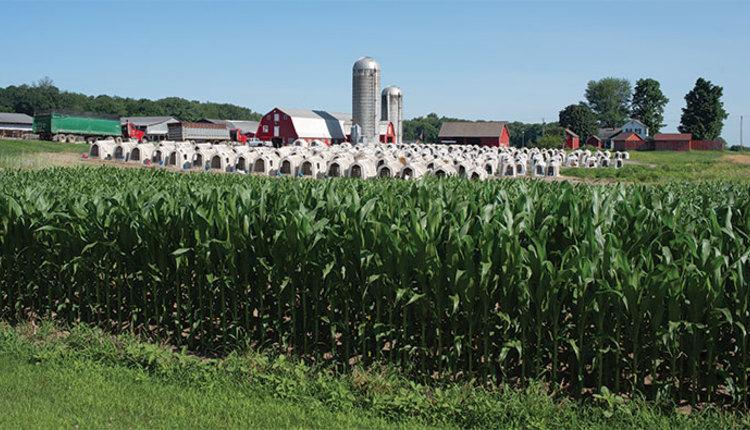200925_555-farm