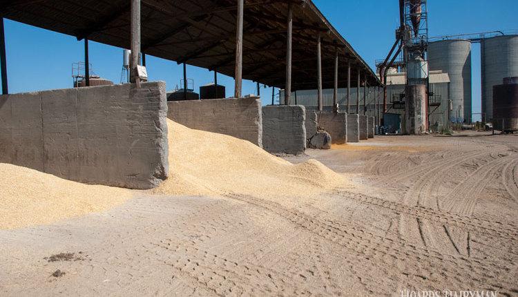 Ferreira-high-commodities_web3