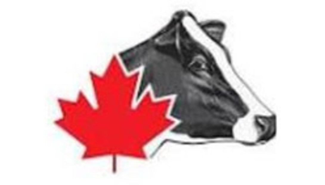 Holstein-Canada-logo