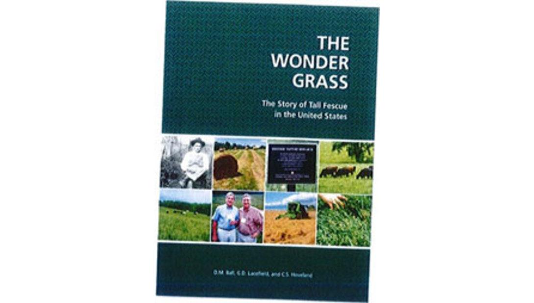 The-Wonder-Grass.jpg-pic