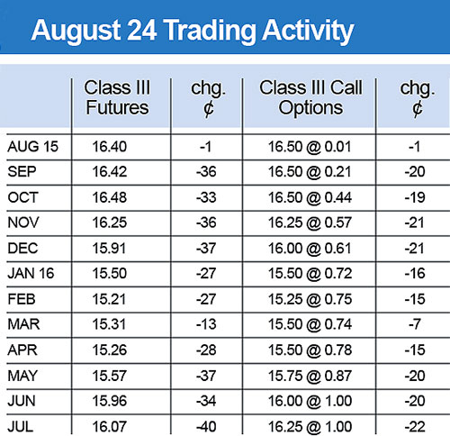 August 24 Trading Activity