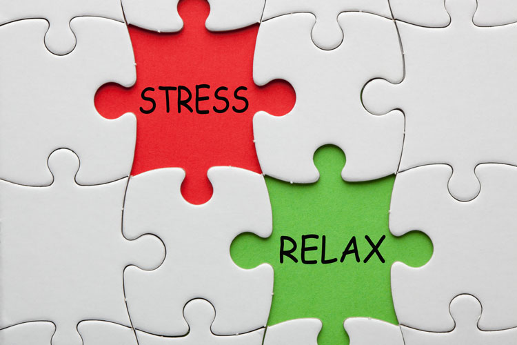 So We Know Students Are Stressed Out >> Are You Stressed Or In Distress