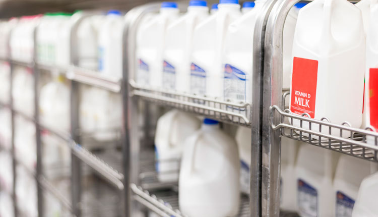 dairy_ph1