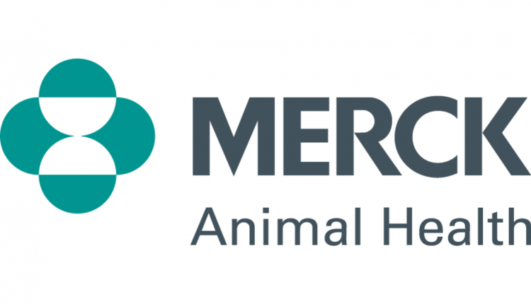 merck_ah_2cs_tg